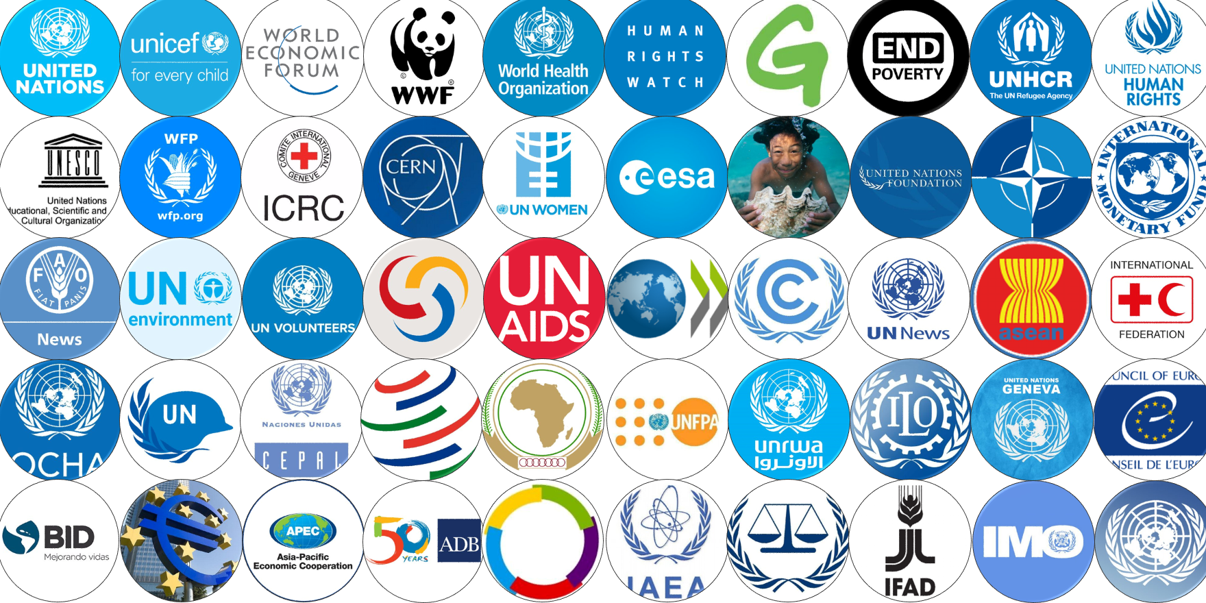international organization e1610188229211