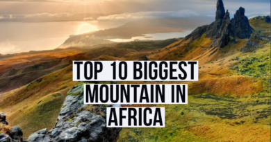 Top 10 biggest mountain in africa