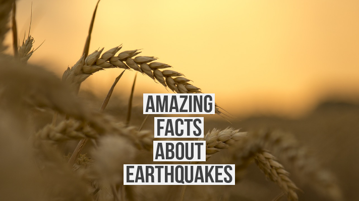 Amazing Facts about Earthquakes