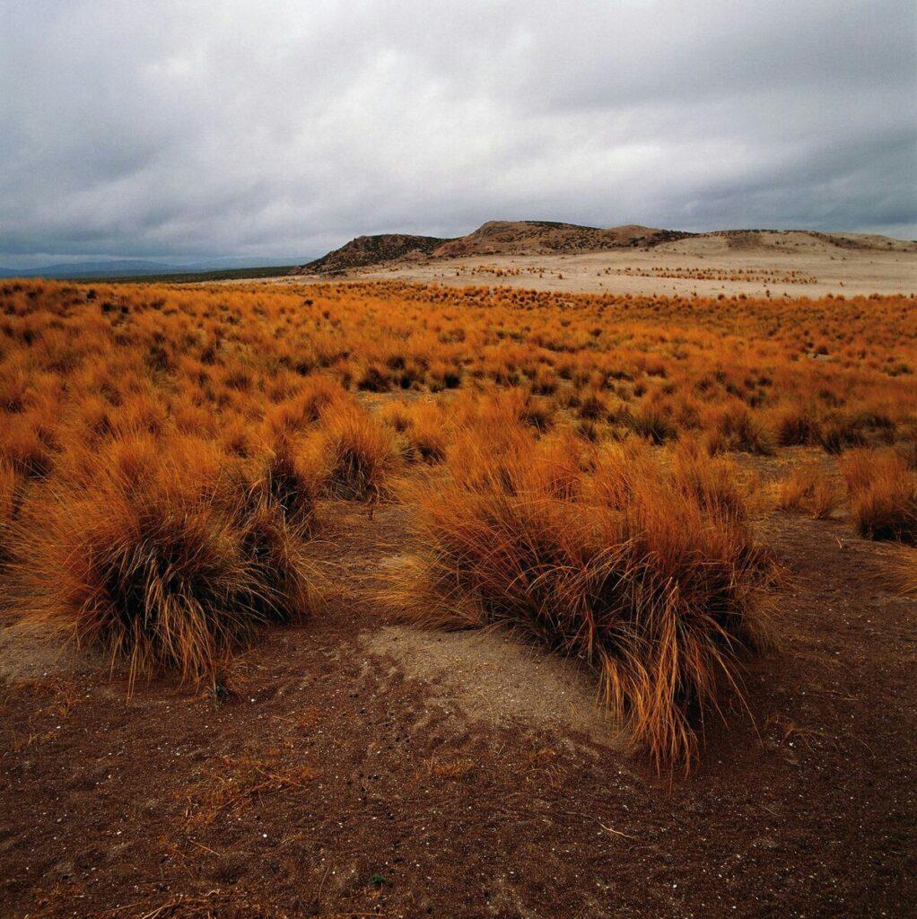 South America Atacama Desert South America