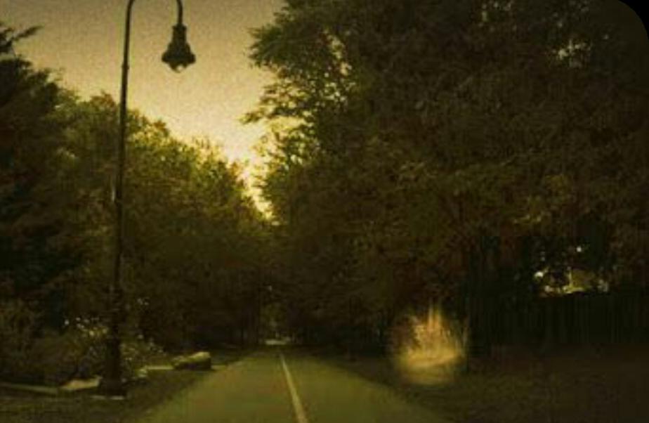 Delhi Cantonment Road , Delhi