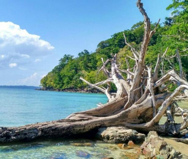 beach in india to Visit chidiva tapu