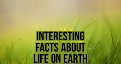 interesting facts about life on earth